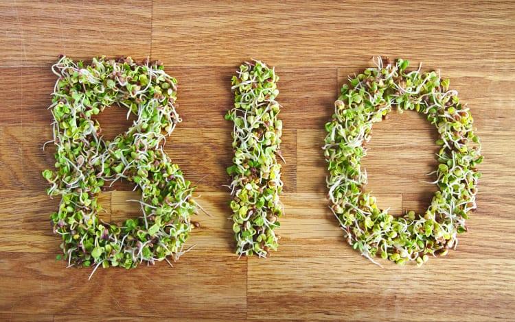 6 razões para preferir alimentos bio