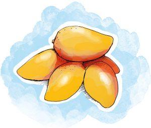 Ao reduzir o volume abdominal, a manga africana é considerada uma das plantas para emagrecer mais eficazes