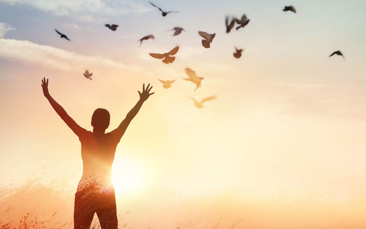 Dicas de especialistas em psicologia e psiquiatria para ter mais qualidade de vida durante o dia a dia
