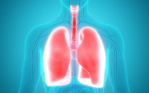 Pneumonia: o que é, quais os sintomas e riscos e como prevenir