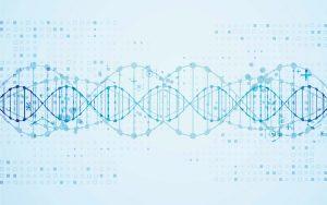 Já existe um teste genético para o risco de diabetes?