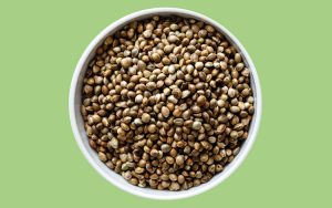 Guia das sementes: de abóbora, linhaça, chia...