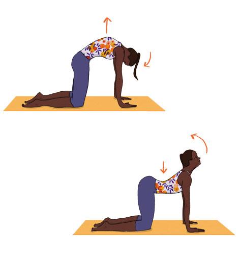 Hérnia discal: Exercício do gato/camelo
