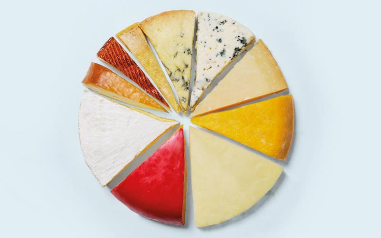 Todos os tipos de queijo